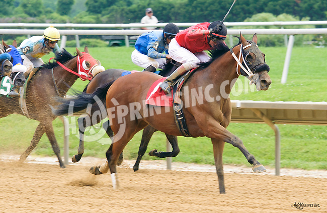 Skiffs Brewmeister winning at Delaware Park on 6/15/16