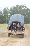 Melissa , Jemima & Corie Riding In Back Of Truck