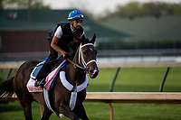 LOUISVILLE, KY - MAY 02: Take Charge Paula gallops in preparation for the Kentucky Oaks at Churchill Downs on May 2, 2018 in Louisville, Kentucky. (Photo by Alex Evers/Eclipse Sportswire/Getty Images)
