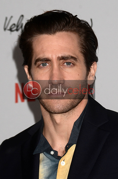 "Jake Gyllenhaal<br /> at the ""Velvet Buzzsaw"" Los Angeles Premiere Screening, Egyptian Theater, Hollywood, CA 01-28-19<br /> David Edwards/DailyCeleb.com 818-249-4998"