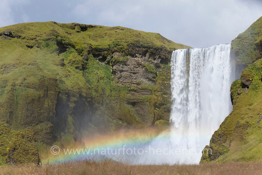 "Skógafoss, Skogafoss, ""Waldwasserfall"", mit Regenbogen, Wasserfall auf Island, Wasserfall des Flusses Skógá im Süden Islands, waterfall in the south of Iceland, rainbow"