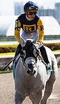 January 25, 2020: Jean Elizabeth #5 with jockey Irad Ortiz Jr. wins the Ladies' Turf Sprint Black Type Stakes during the Pegasus World Cup Invitational at Gulfstream Park Race Track in Hallandale Beach, Florida. Liz Lamont/Eclipse Sportswire/CSM