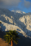 San Jacinto Mountains, CA