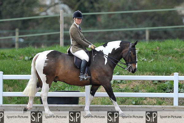 Second placed Broadband ridden by Justine Armstrong-small. Class 7. Lightweight Cob. RIHS Qualifiers.  Brook Farm Training Centre. Essex. 05/04/2015. MANDATORY Credit Peter Reynolds/Sportinpictures - NO UNAUTHORISED USE - 07837 394578