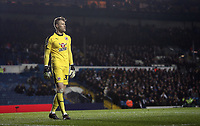 Reading's Anssi Jaakkola<br /> <br /> Photographer Rich Linley/CameraSport<br /> <br /> The EFL Sky Bet Championship - Leeds United v Reading - Tuesday 27th November 2018 - Elland Road - Leeds<br /> <br /> World Copyright &copy; 2018 CameraSport. All rights reserved. 43 Linden Ave. Countesthorpe. Leicester. England. LE8 5PG - Tel: +44 (0) 116 277 4147 - admin@camerasport.com - www.camerasport.com