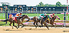 Tuition winning at Delaware Park on 7/14/16