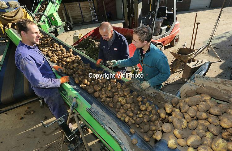 Foto: VidiPhoto<br /> <br /> ANDELST - De laatste aardappels van het seizoen worden woensdag bij akkerbouwbedrijf Van Olst uit Andelst in de Betuwe gerooid, gesorteerd en opgeslagen in enorme opslagschuren. Daar worden de piepers tot komend voorjaar gedroogd en vervolgens verwerkt tot friet van Aviko. Dit jaar oogst Van Olst zo'n 2000 ton aardappels, waarvan een deel op contract voor vaste prijzen. Door het natte weer van de afgelopen weken konden de machines bij Van Olst tien dagen lang niet het land op, waardoor de oogst de nodige vertraging heeft opgelopen. Akkerbouwers in het hele land hebben veel last gehad van het natte weer. Een deel van de oogst is daardoor verloren gegaan. De aardappeloogst valt dit jaar met nog geen 25 miljoen ton ruim 11 procent lager uit dan in het recordjaar 2014.