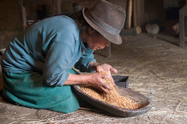 (MODEL RELEASED IMAGE) Wearing a traditional Andean felt hat, Ermelinda Ayme spends part of her morning in the windowless cooking hut in Tingo, Ecuador, cleaning barley in the light from the doorway. After she blows away the dust and chaff, the grain is ready to be ground for breakfast porridge. Hungry Planet: What the World Eats (p. 114).