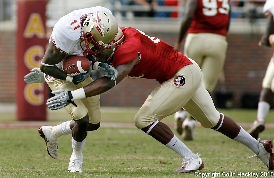TALLAHASSEE, FL 4/10/10-FSU-SPRING FB10 CH-Garnet's Nigel Bradham wraps up Gold receiver Timothy Orange during first half Spring Game action Saturday at Doak Campbell Stadium in Tallahassee. .COLIN HACKLEY PHOTO