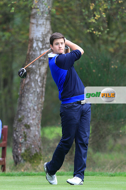 Max Schmitt (GER) on the 6th tee of the Mixed Fourballs, puts to go two up during the 2014 JUNIOR RYDER CUP at the Blairgowrie Golf Club, Perthshire, Scotland. <br /> Picture:  Thos Caffrey / www.golffile.ie
