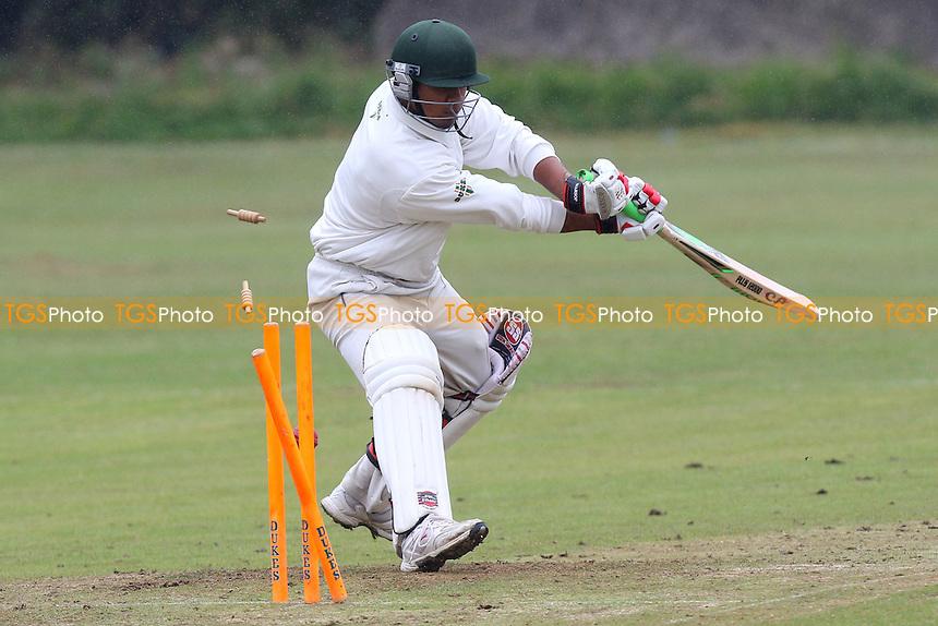 Noak Hill Taverners CC (batting) vs Terling CC - Mid-Essex Cricket League at Church Lane - 20/06/15 - MANDATORY CREDIT: Gavin Ellis/TGSPHOTO - Self billing applies where appropriate - contact@tgsphoto.co.uk - NO UNPAID USE