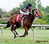 Devine Sara winning at Delaware Park on 9/21/13