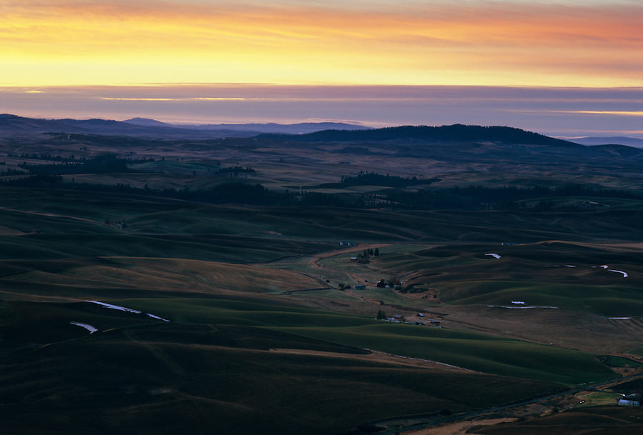 Warm light shines along the fields and hills of the Palouse.