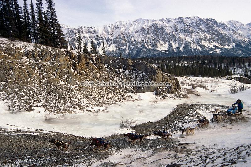 Joe Redington Sr On The Glacier 1997 Iditarod /Nout Of Rohn /Nto Nikolai