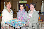 Catherine Tehan, Sarah Tehan and Shiela Tehan Kilgarvan and Killarney pictured at the Arty bits Craft Fair at the Carlton Hotel Tralee on Sunday.
