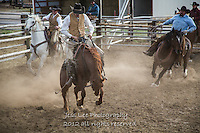 Ridng em Cowboys working and playing. Cowboy Cowboy Photo Cowboy, Cowboy and Cowgirl photographs of western ranches working with horses and cattle by western cowboy photographer Jess Lee. Photographing ranches big and small in Wyoming,Montana,Idaho,Oregon,Colorado,Nevada,Arizona,Utah,New Mexico.
