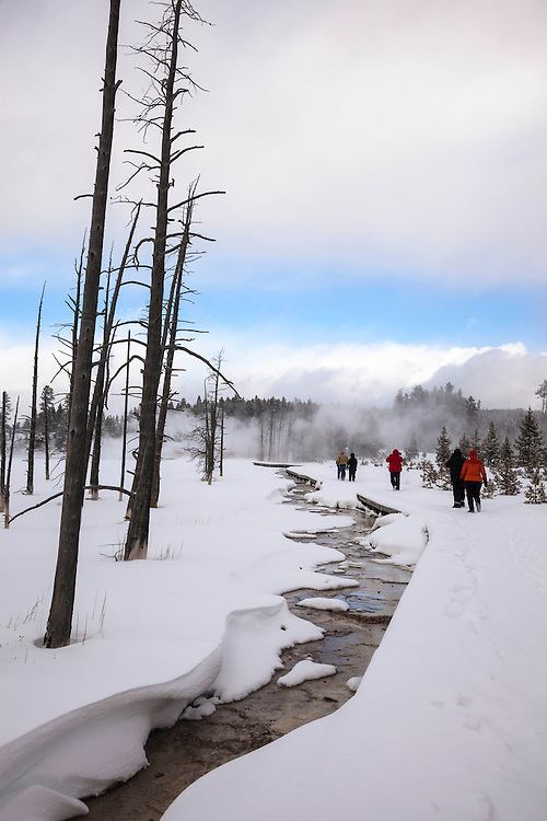 Snowshoers brave the winter cold on their way to Lower Geyser Basin