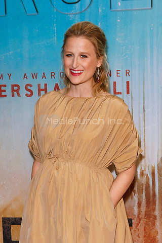 Los Angeles, CA - JAN 10:  Mamie Gummer attends the HBO premiere of True Detective Season 3 at the DGA Theater on January 10 2019 in Los Angeles CA. Credit: CraSH/imageSPACE/MediaPunch