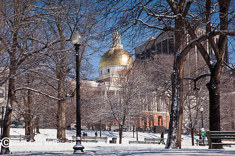 The Massachusetts State House over Boston Common, Boston, MA, USA