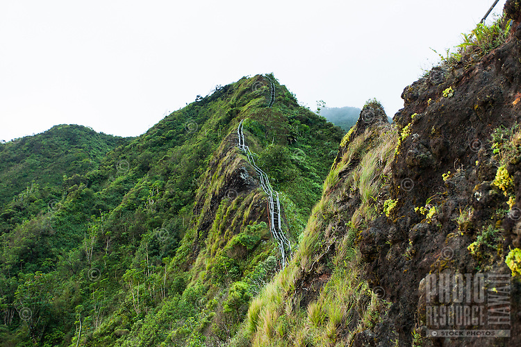 "Steps leading upward into the Ko'olau mountains on the Haiku Stairs (""Stairway to Heaven"") hiking trail in Kaneohe, O'ahu"