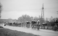 peloton<br /> <br /> 2014 Milano - San Remo
