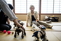 Michiko Sakurai plays with her AIBO at an AIBO gatheting outside of Tokyo. In 1999, Sony released a series of robotic pets called AIBO or Artificial Intelligence Robot. In 2006, they discontinued the AIBO line and then in 2014, discontinued all reparair services on the AIBO. A small community of AIBO owners still exists and a new repair service has emerged to help keep the AIBOs running.