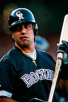 Vinny Castilla of the Colorado Rockies during a game at Dodger Stadium in Los Angeles, California during the 1997 season.(Larry Goren/Four Seam Images)