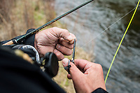 The Broadmoor Hotel's Fish Camp Manager Scott Tarrant ties a new lure to fishing line while fly fishing near Colorado Springs, Colorado, Monday, May 4, 2015. <br /> <br /> Photo by Matt Nager