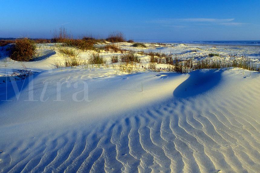 AJ1550, Cumberland Island, sand dune, Georgia, Wind swept sand dunes on the white sand beaches of Cumberland Island National Seashore, Georgia.