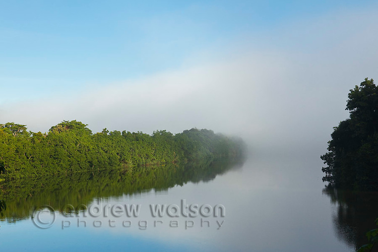 Morning mist shrouds the Daintree River.  Daintree National Park, Queensland, Australia