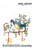 Marcello, CHRISTMAS ANIMALS, WEIHNACHTEN TIERE, NAVIDAD ANIMALES, paintings+++++,ITMCXM1897,#XA# ,owls