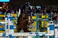 ZUIDBROEK - Paardensport, ICCH Zuidbroek, springen internationaal Grote Prijs , 05-01-2019, Suzanne Kuyten met Dallas Du Domaine Z