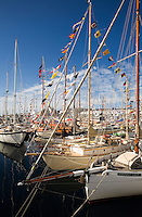 Wooden sailboats at Kings Pier Marina during the bi-annual Wooden Boat Festival.  The festival is the largest congregation of wooden craft in the southern hemisphere.  Hobart, Tasmania, AUSTRALIA