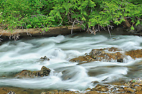 Little Qualicum River Falls<br /> Little Qualicum River Falls Provincial Park<br /> British Columbia<br /> Canada