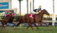 HALLANDALE BEACH, FL - March 3: Sadler's Joy, #1, with Julien Leparoux aboard, shows his class by taking over at the wire for the Grade II Mac Diarmida Stakes at Gulfstream on March 3, 2018 in Hallandale Beach, FL. (Photo by Carson Dennis/Eclipse Sportswire/Getty Images.)