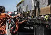 Niños roban uvas de camion