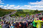 Tour de France 2014