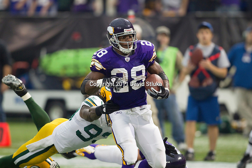 Minnesota Vikings running back Adrian Peterson (28) carries the ball during a Week 7 NFL football game against the Green Bay Packers on October 23, 2011 in Minneapolis, Minnesota. The Packers won 33-27. (AP Photo/David Stluka)