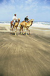 Benedict Allen and camels travel along the sand dunes of the Langevaan and  coast line in the Namib Naukluft desert, a  1000 foot high wall of sand where the desert meets the Atlantic ocean.  Access is restricted due to Diamond mining activity by DeBeers.