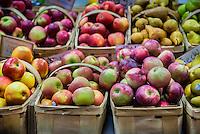 Varieties of fresh organic apples at a farmers market.