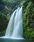 Umpqua National Forest, OR:  Fall Creek Falls flows over moss covered basalt cliffs in early spring