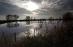 Wateroverlast met onder water gelopen uiterwaarden veroorzaakt door hoge waterstand van de rivier en veel regen in Nederland. COPYRIGHT TON BORSBOOM