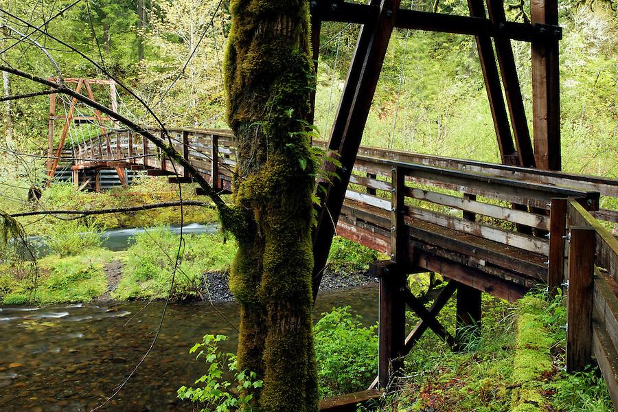 Gorge Trail #400 passes over Eagle Creek on a suspension bridge, Eagle Creek Recreation Area, Columbia River Gorge National Scenic Area, Oregon, USA