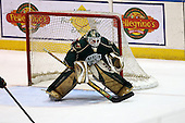 February 24th 2008:  Barry Brust (33) of the Houston Aeros in goal during a game vs. the Rochester Amerks at Blue Cross Arena at the War Memorial in Rochester, NY.  The Aeros defeated the Amerks 4-0.   Photo copyright Mike Janes Photography 2008