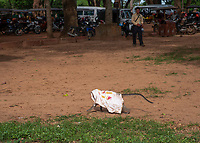 A Monkey is running away with a T-Shirt and the parking area of Angkor Wat, Cambodia