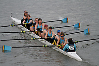 Crew: 159 Cambridge 99 Rowing Club B<br /> <br /> Women's Head of the River (WeHoRR) 2017<br /> <br /> To purchase this photo, or to see pricing information for Prints and Downloads, click the blue 'Add to Cart' button at the top-right of the page.