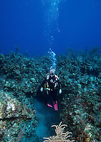 Diver emerging from reef cave, Exumas, Bahama Islands