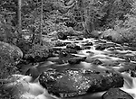 Film image of Glacier Creek near Sprague Lake in black and white. Rocky Mountain National Park, Colorado. September 13, 1998.