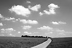 Europa, DEU, Deutschland, Nordrhein Westfalen, NRW, Rheinland, Niederrhein, Xanten, Agrarlandschaft, Fuerstenberg, Feld, Acker, Himmel, Wolken, Weg, Strasse, Kategorien und Themen, Landwirtschaft, Landwirtschaftlich, Agrar, Agrarwirtschaft, Natur, Naturfoto, Naturfotos, Naturfotografie, Naturphoto, Naturphotographie, Landschaft, Landschaften, Landschaftsfoto, Landschaftsfotografie, Landschaftsphoto, Landschaftsphotographie<br /> <br /> <br /> [Fuer die Nutzung gelten die jeweils gueltigen Allgemeinen Liefer-und Geschaeftsbedingungen. Nutzung nur gegen Verwendungsmeldung und Nachweis. Download der AGB unter http://www.image-box.com oder werden auf Anfrage zugesendet. Freigabe ist vorher erforderlich. Jede Nutzung des Fotos ist honorarpflichtig gemaess derzeit gueltiger MFM Liste - Kontakt, Uwe Schmid-Fotografie, Duisburg, Tel. (+49).2065.677997, schmid.uwe@onlinehome.de, www.image-box.com]