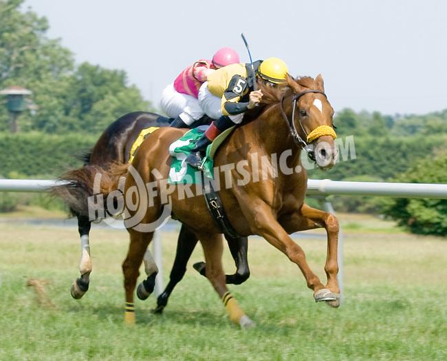 London Lane winning at Delaware Park on 7/4/12